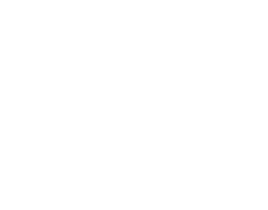 credit-check.it